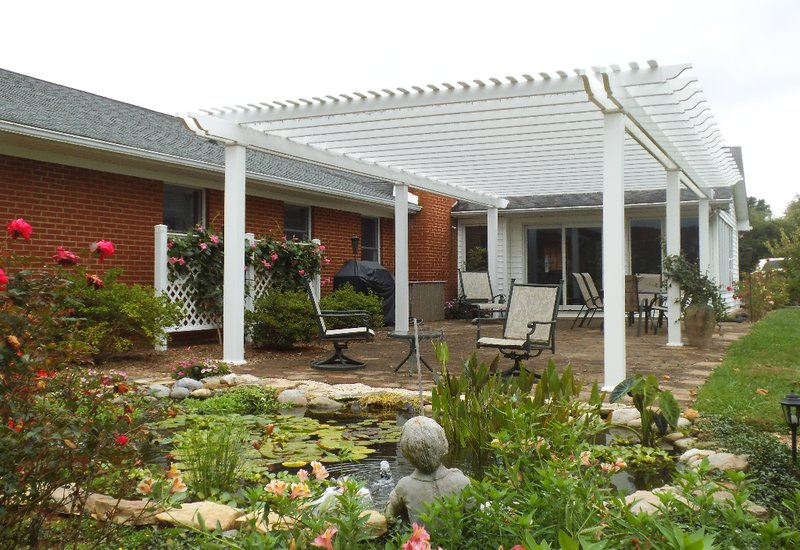 Choosing Plants For Your Pergola