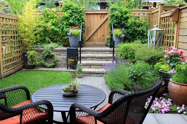 Backyard Makeover for Under $1,000
