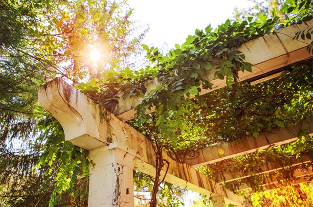 How to Clean a Vinyl Pergola Like a Pro (& Prevent Future Filth)