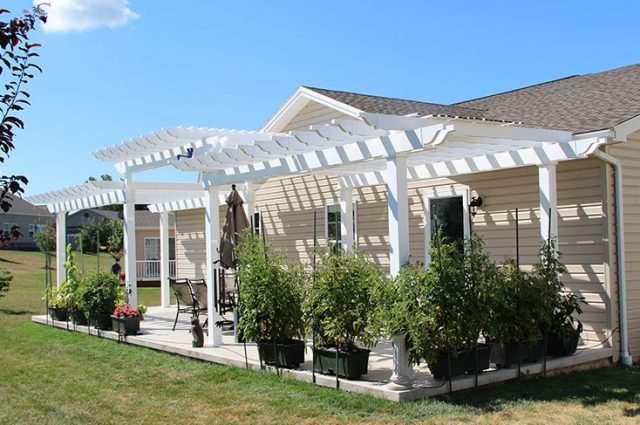 Pergola Inspiration for Different Types of Homes & Gardens